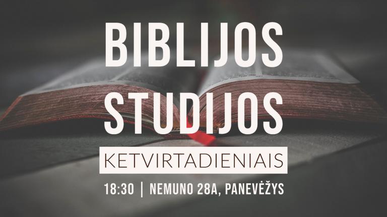 2020 Biblijos STUDIJOS